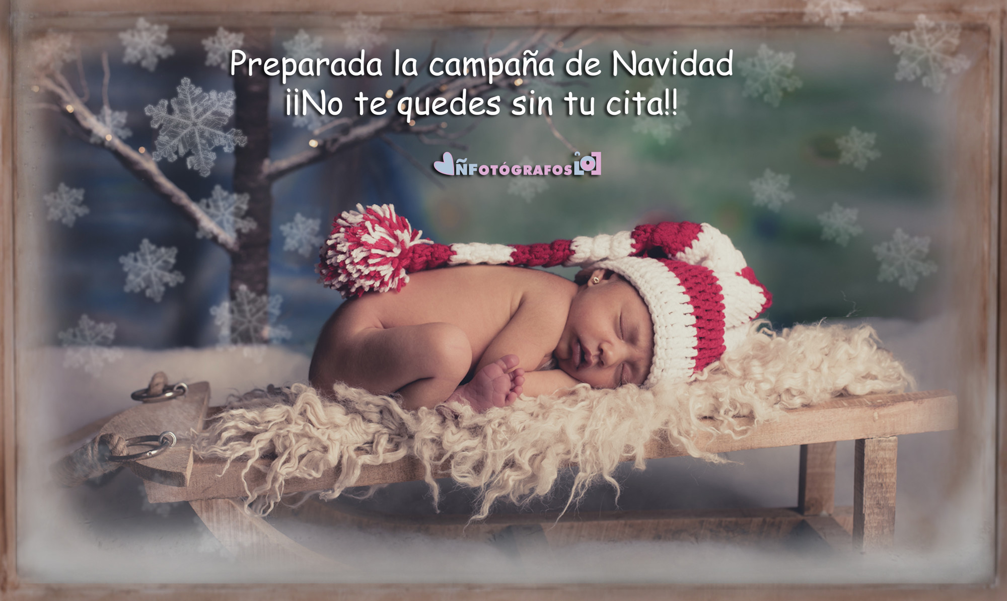 navidad ÑF 2015